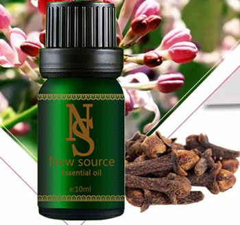 The aroma of clove oil has the effect of security